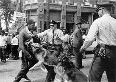 300pxbirmingham_campaign_dogs